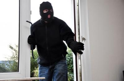 ladro-domestico
